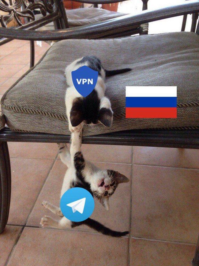 Запрет Telegram в России