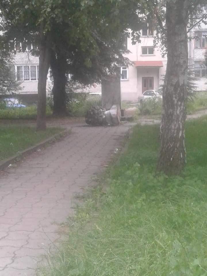 Знищили пам'ятник Пушкіну