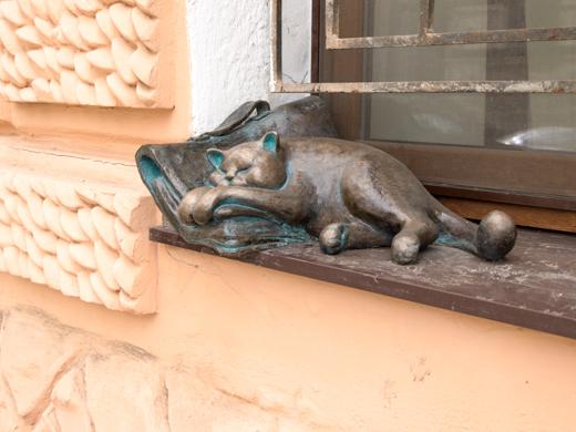 кот в Одессе