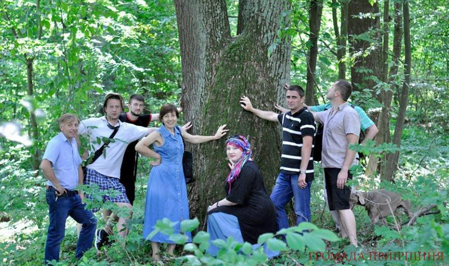 ліс кампа буча