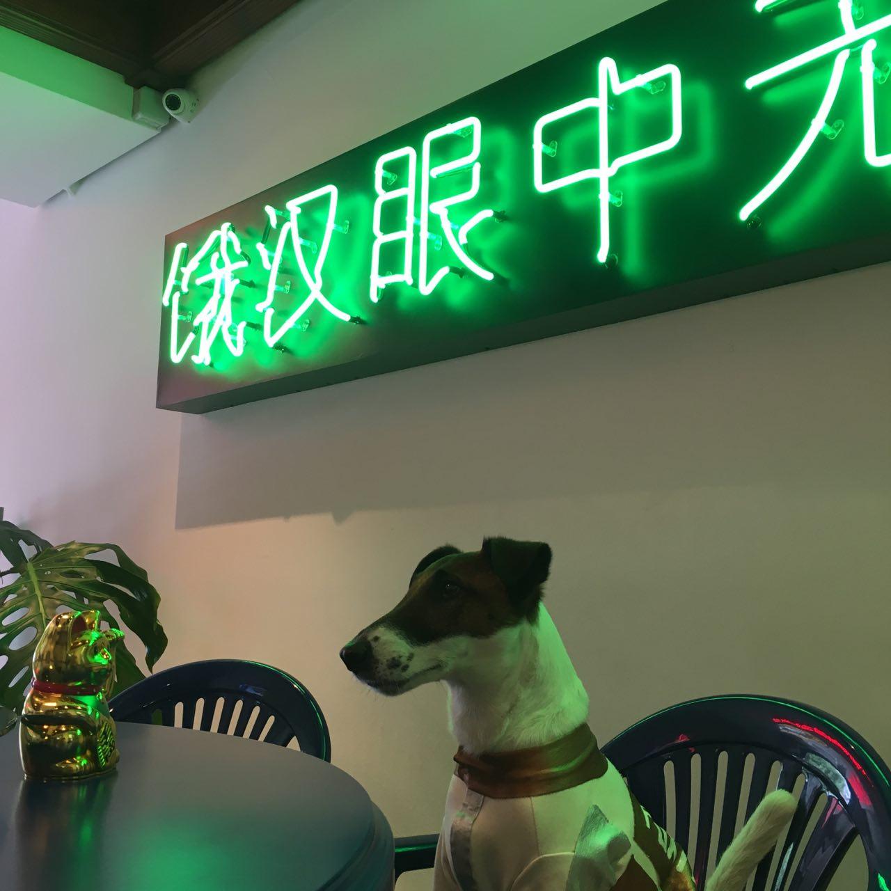 київські кафе, куди можна приходити з собаками