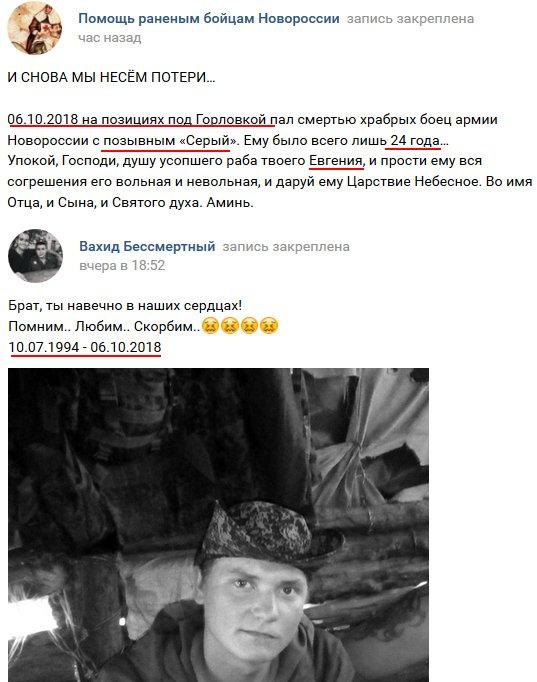 Бойовик Сірий