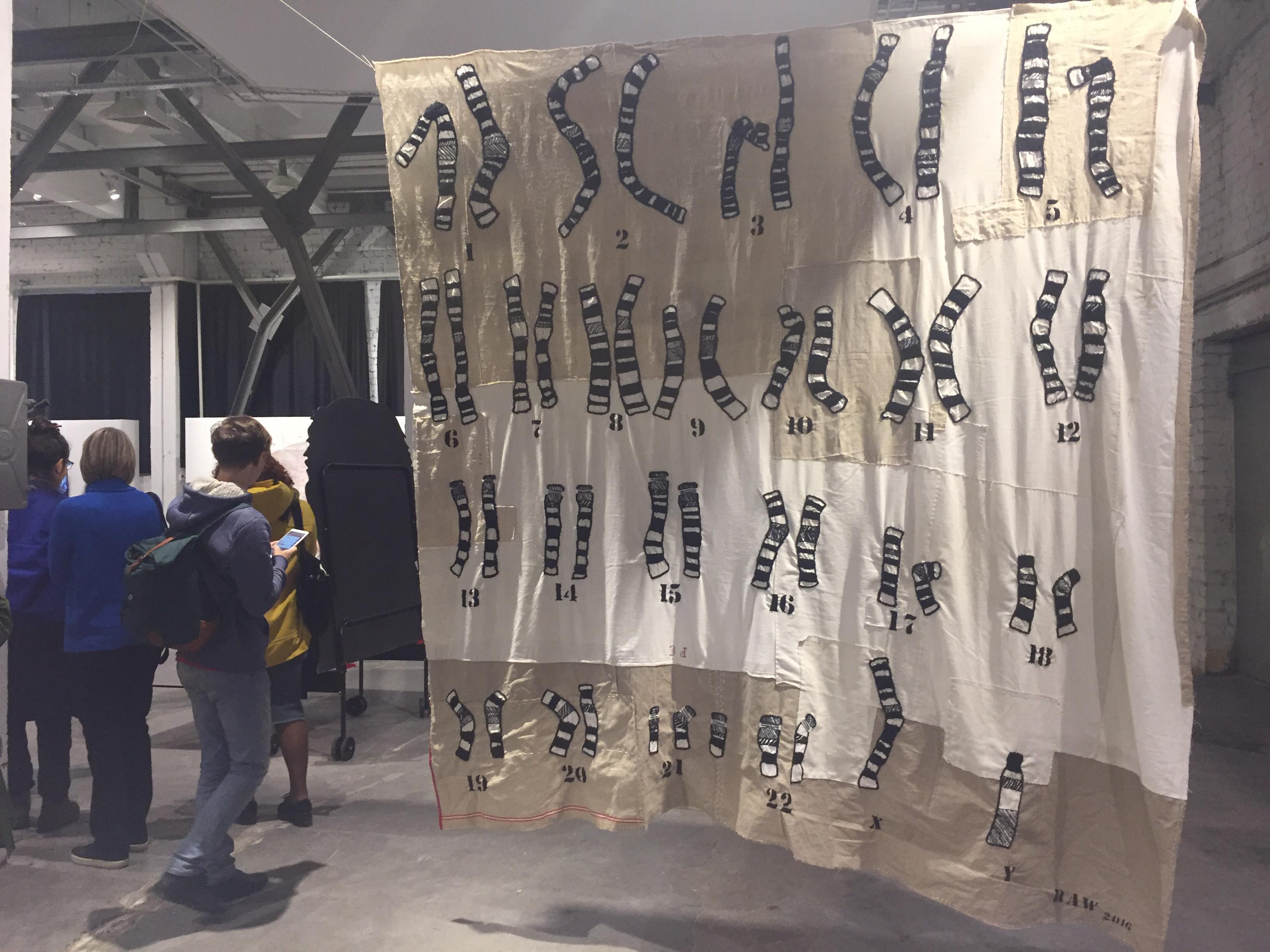 Жан-Марі Мон. Хромосомний килим, 2016