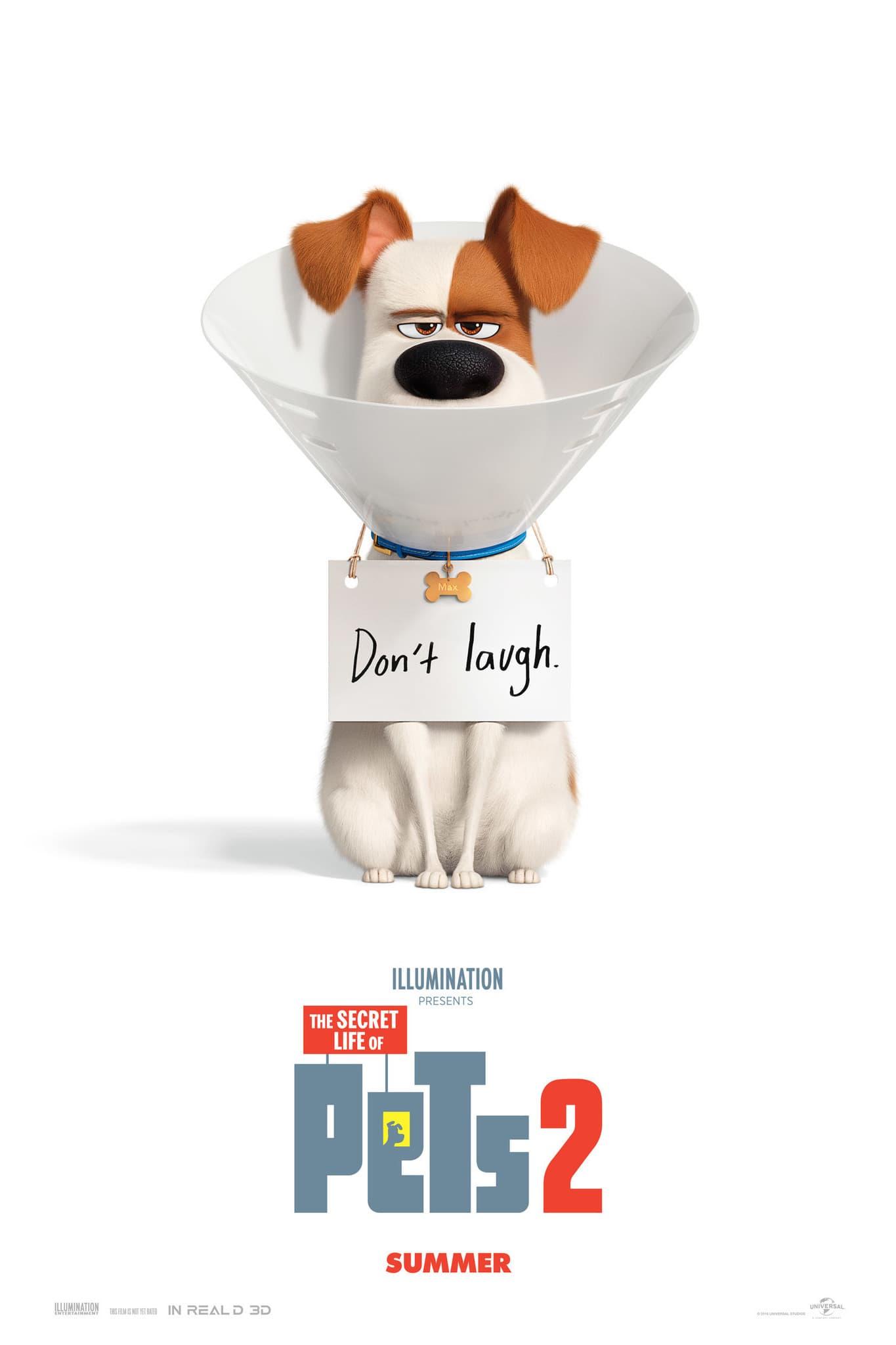 Тайная жизнь домашних животных-2 постер