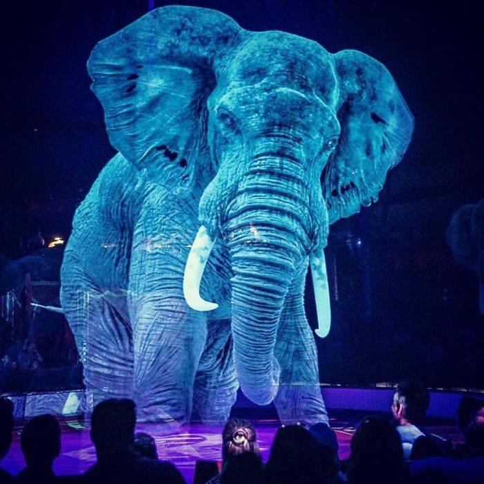 голограмами в цирку
