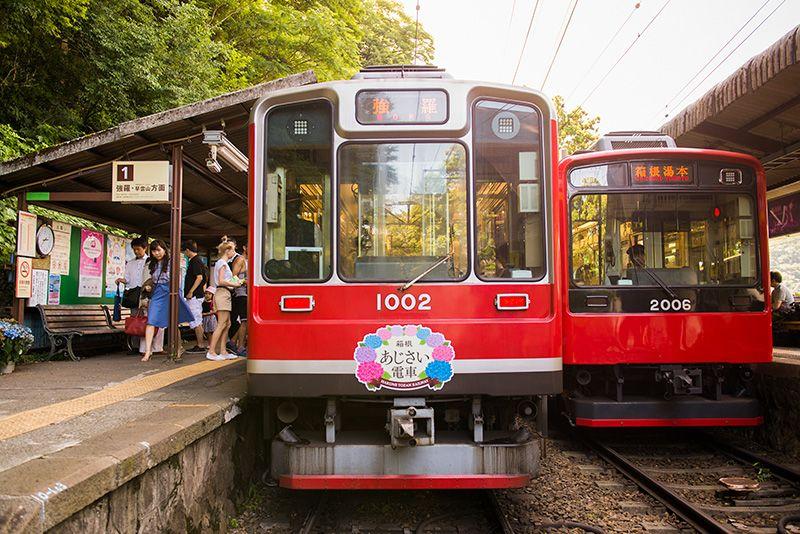 Поїзд гортензій японія