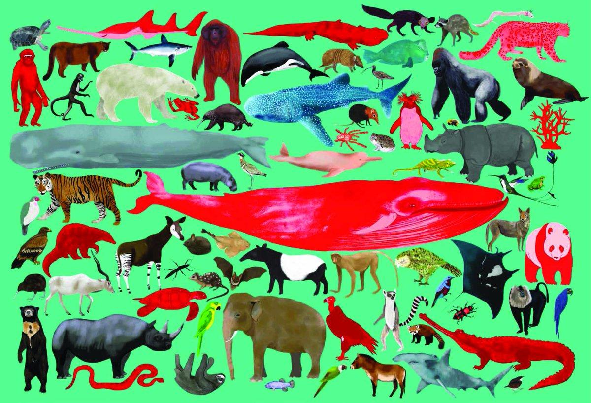 красная книга животные