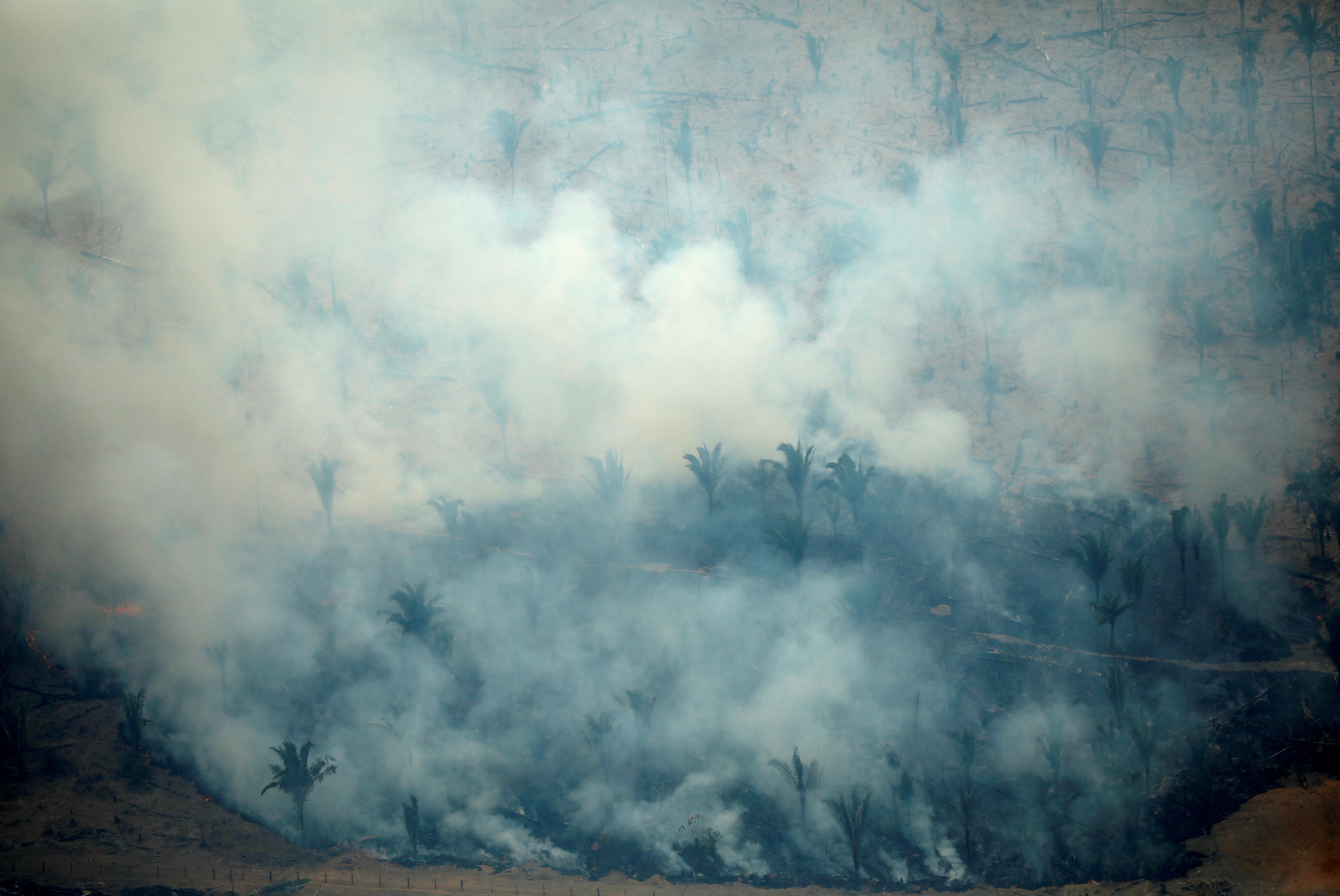 амазонія пожежа