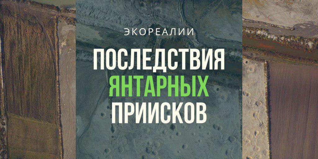 Что добыча янтаря сделала с украинским Полесьем - ЭкоРубрика