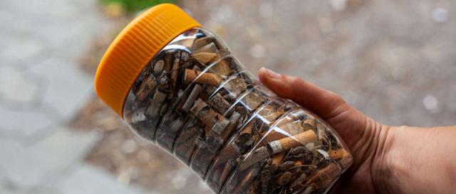 Італійці перероблятимуть сигаретні недопалки у субстрат для вирощування рослин