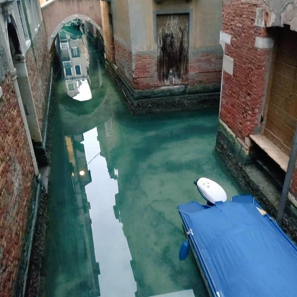 У Венеції через пандемію коронавірусу канали стали чистими