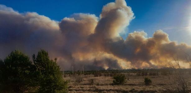пожежі біля Чорнобилю