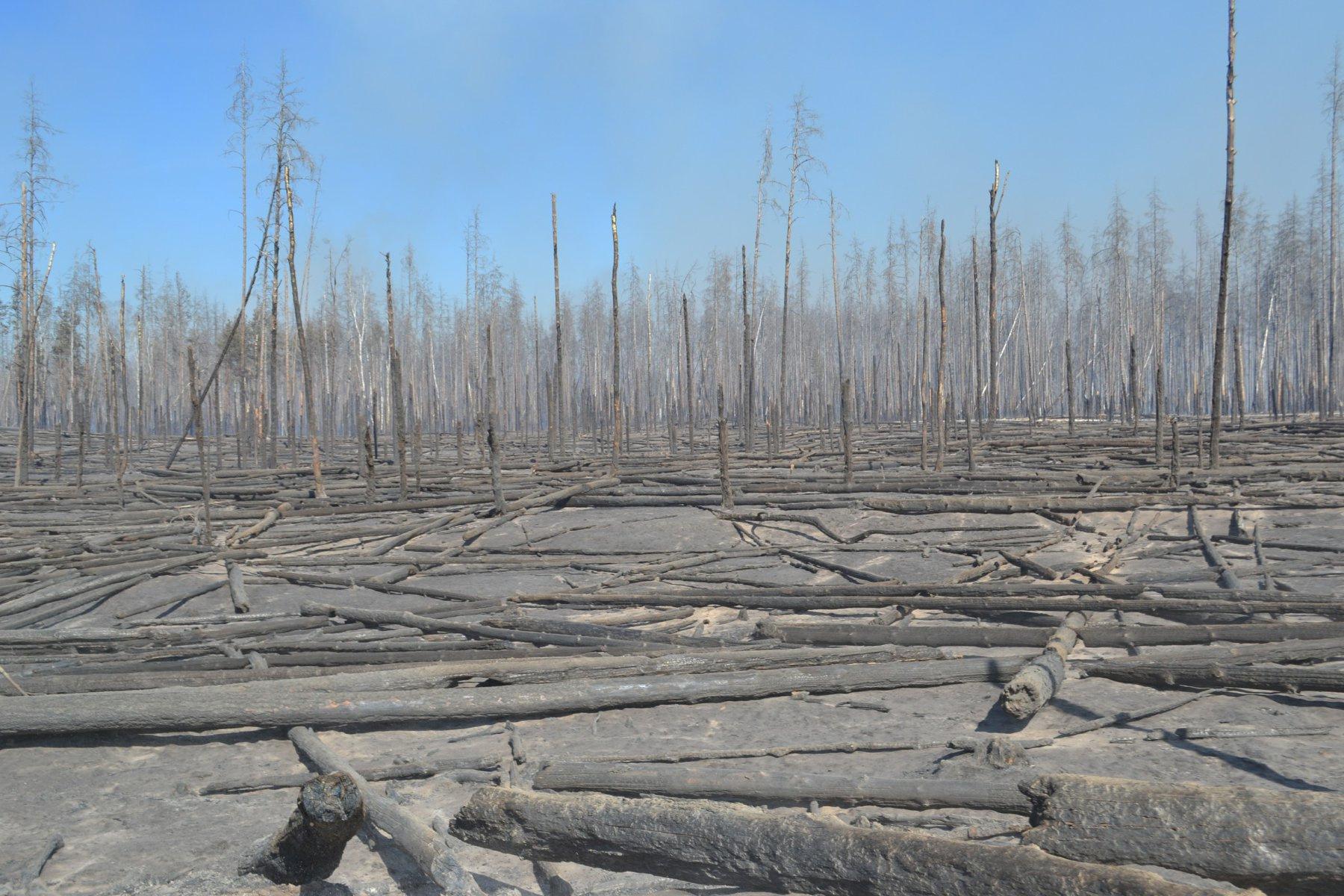 пожежа Чорнобиль