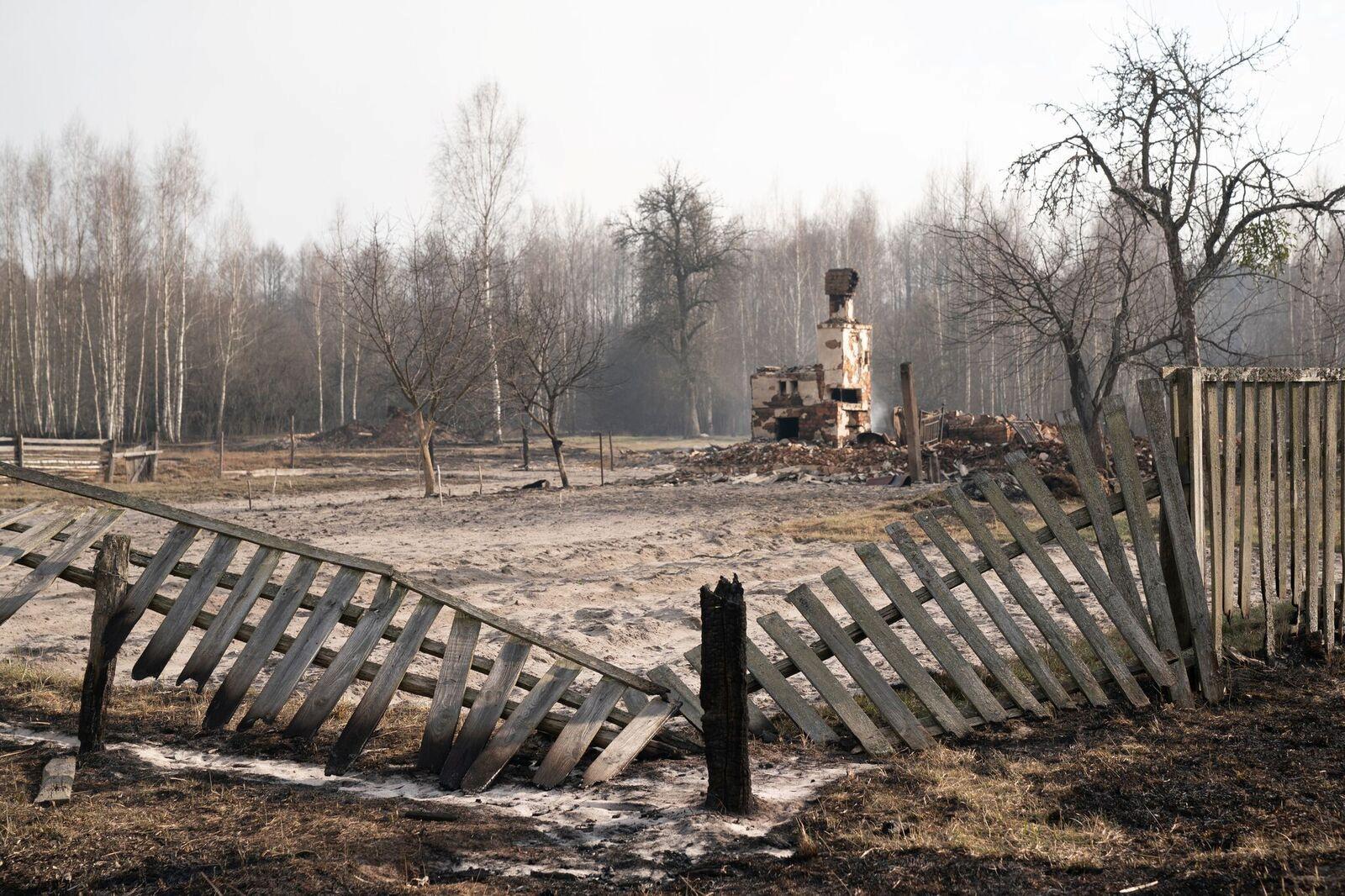 пожежі житомирщина