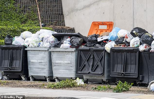 В Британии по радио учат компостировать, чтобы избежать мусорного коллапса на карантине
