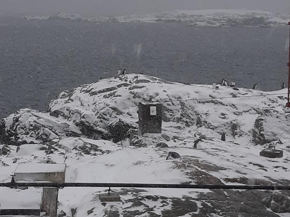 25-та Українська антарктична експедиція прибула на станцію