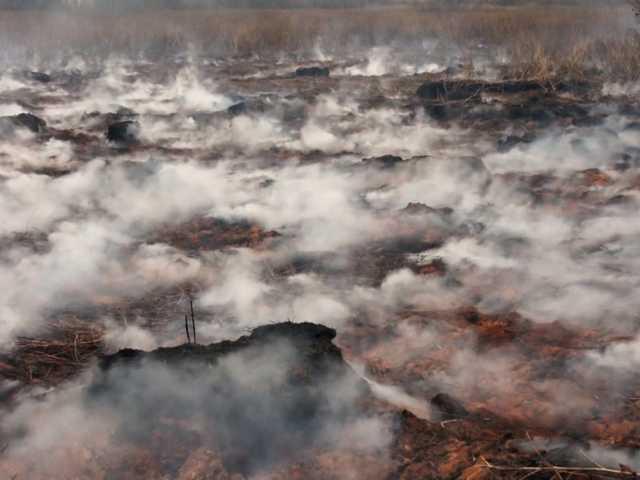 торфяники горять в україні