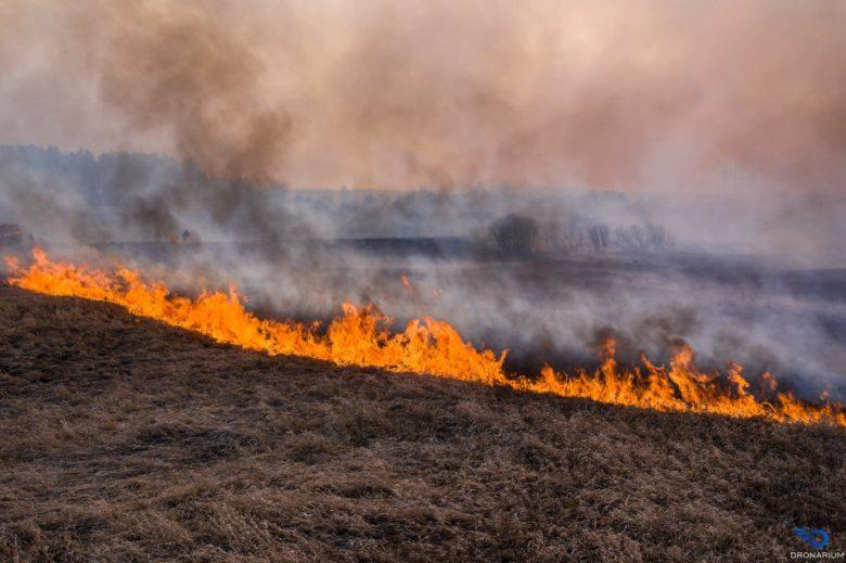 пожар чорнобиль