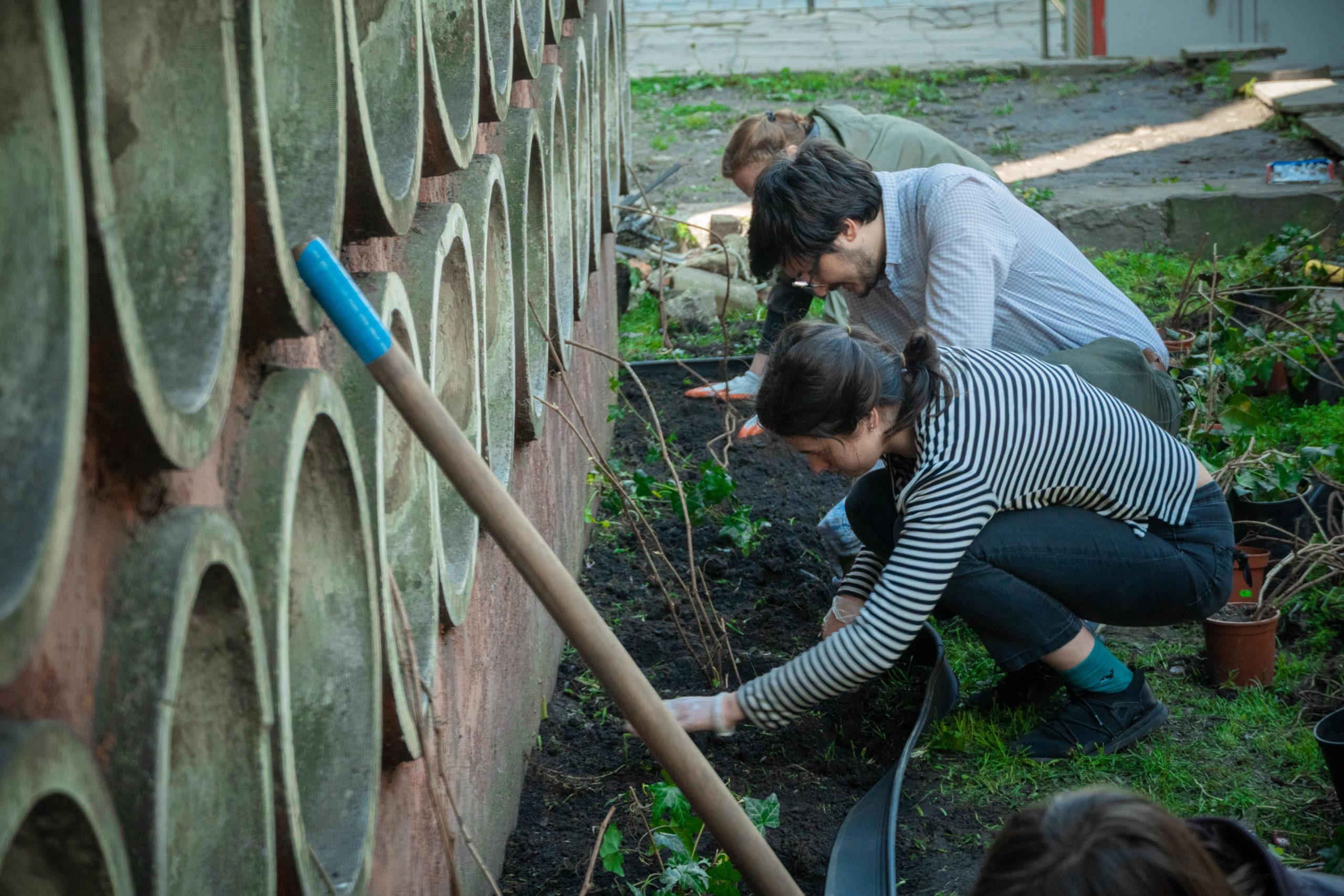 У Львові облаштували перший громадський дощовий садокУ Львові облаштували перший громадський дощовий садок