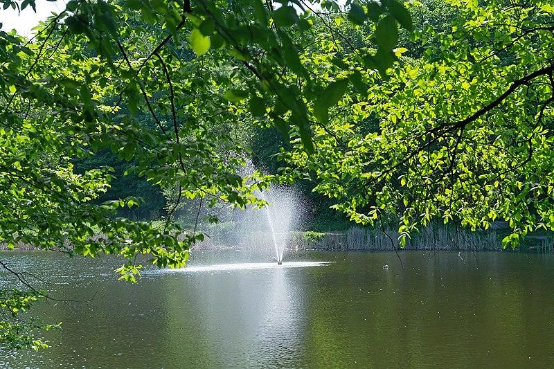 Голосіївський парк імені Максима Рильського
