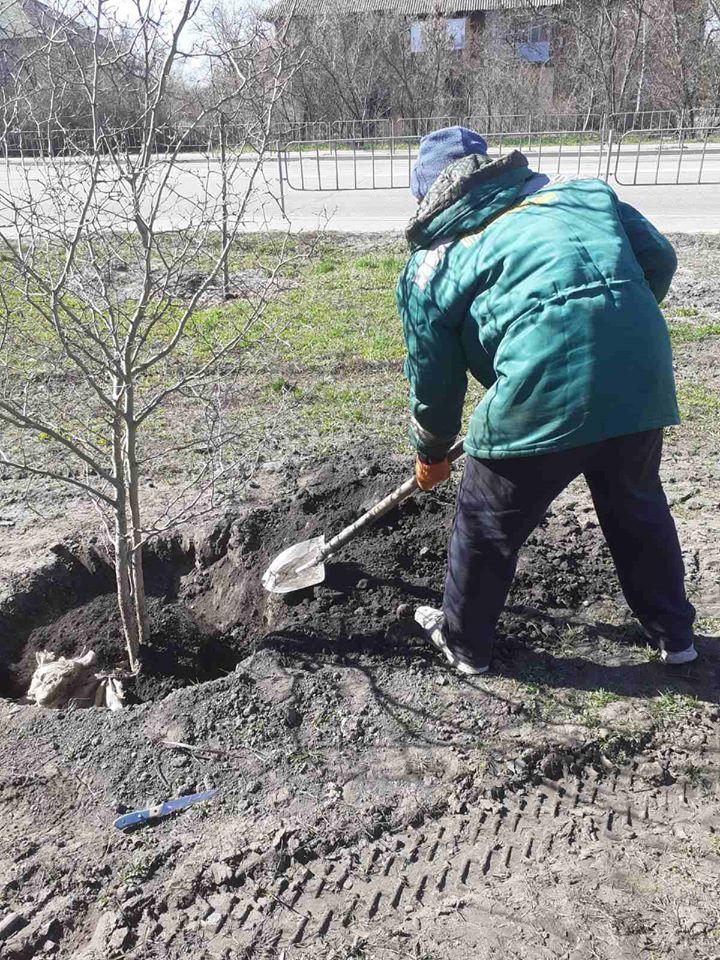 Що не так із планом озеленення Києва?