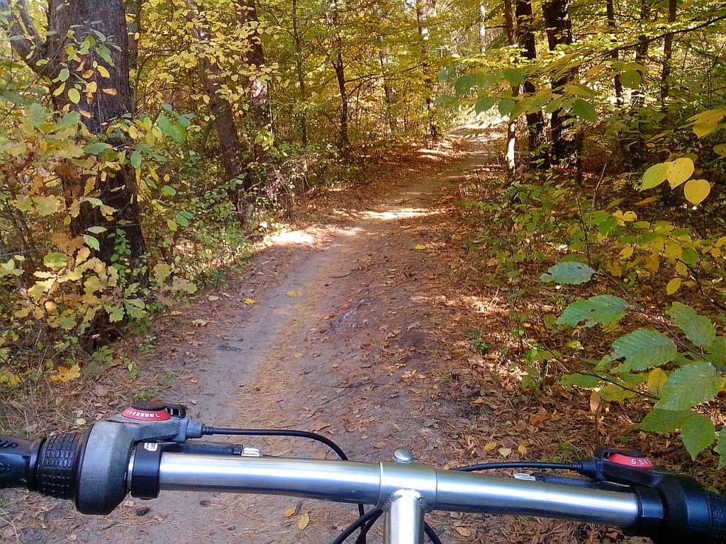 велосипед ліс Пуща