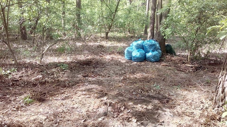 Українець за час карантину зібрав 2,5 тонни сміття, гуляючи лісом