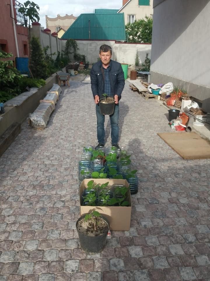 Озеленення Херсонщини