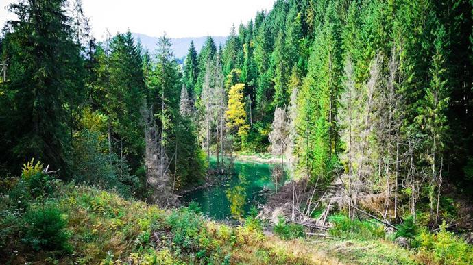 Внаслідок зсуву у Карпатах зникло високогірне озеро
