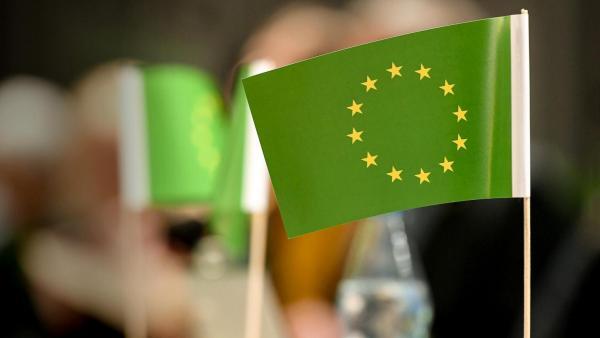 зелений курс