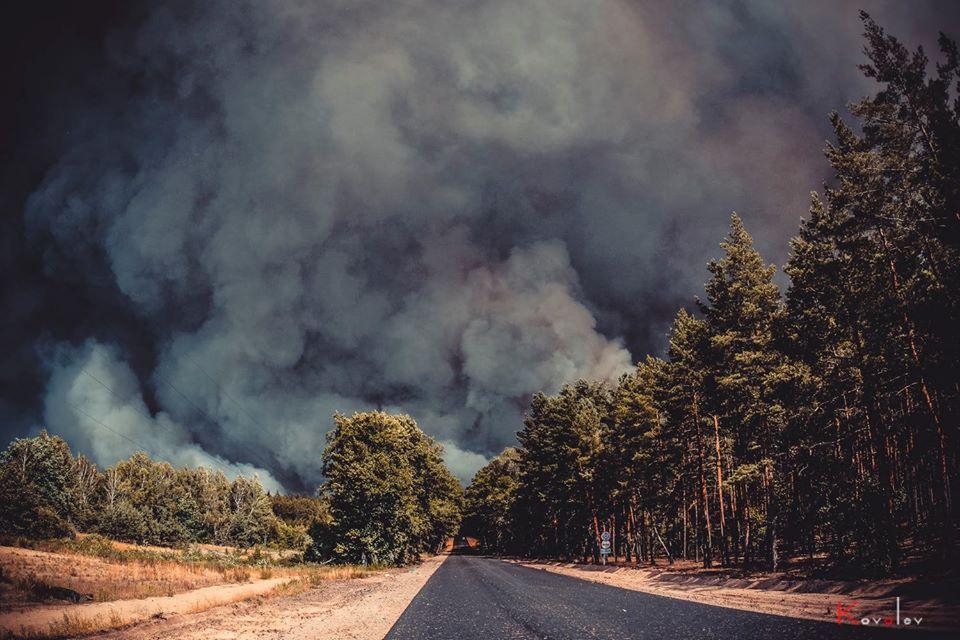Лісова пожежа на Луганщині