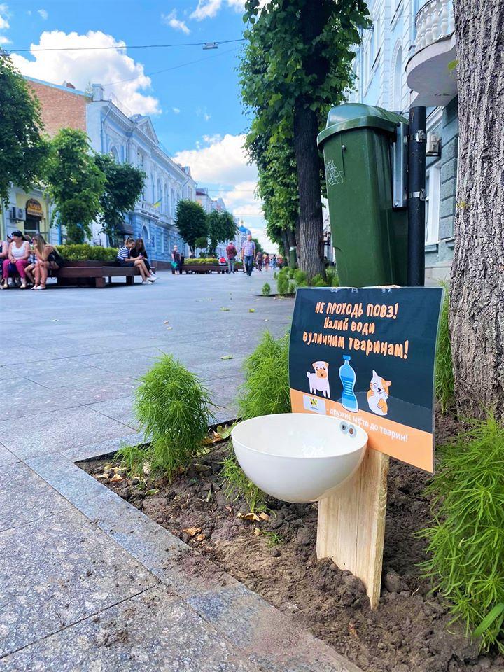 У Житомирі встановили поїлки для вуличних тварин
