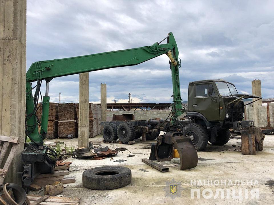 Незаконна вирубка лісу: на Прикарпатті провели масові обшуки
