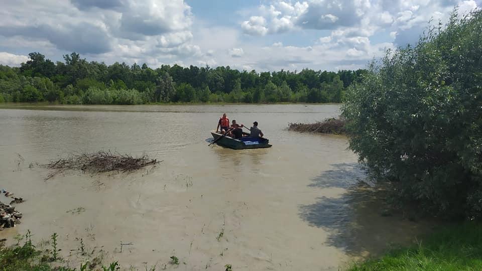 На Буковині врятували 14 сарн, які потрапили в пастку через паводки