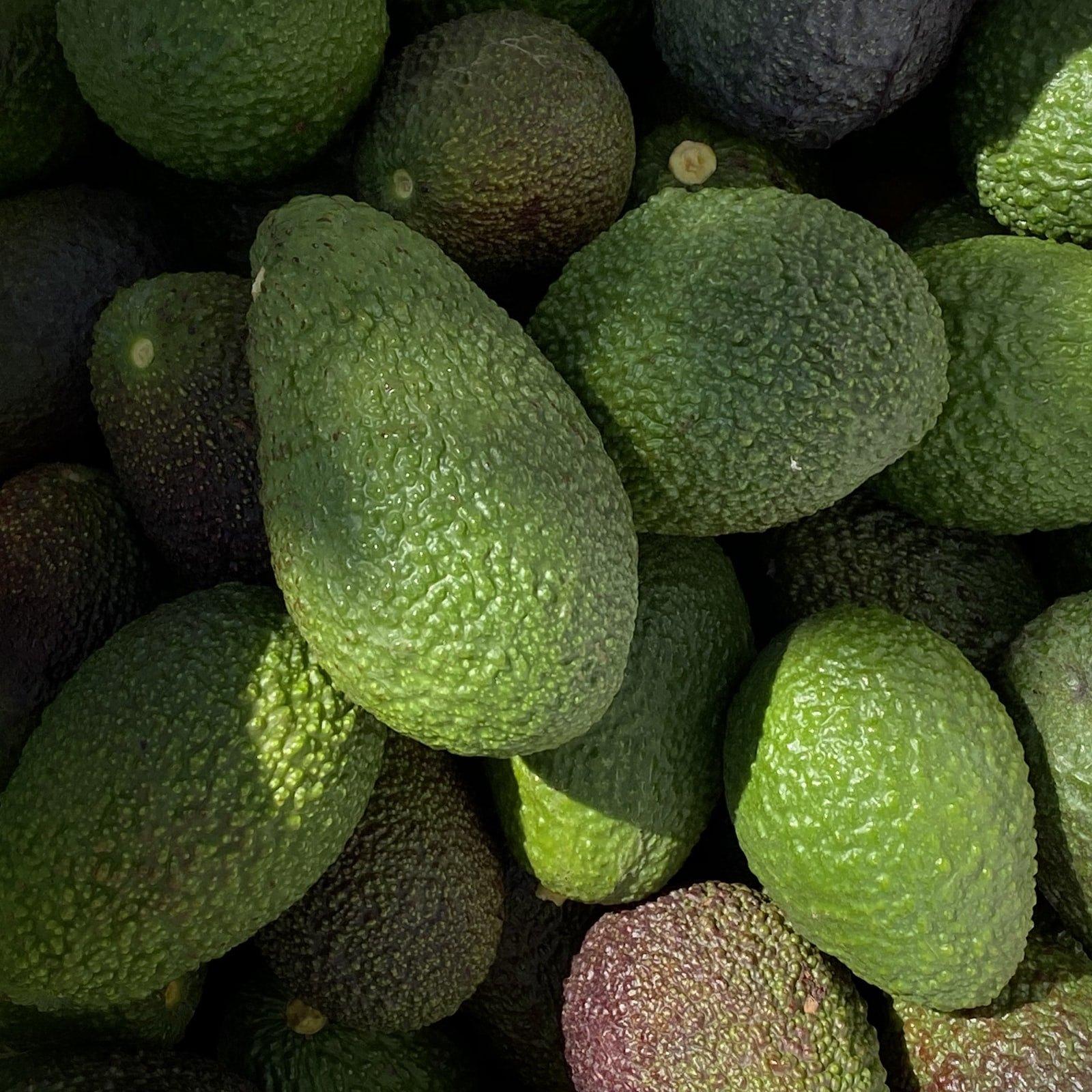 Американські студенти винайшли прилад, який вимірює стиглість авокадо