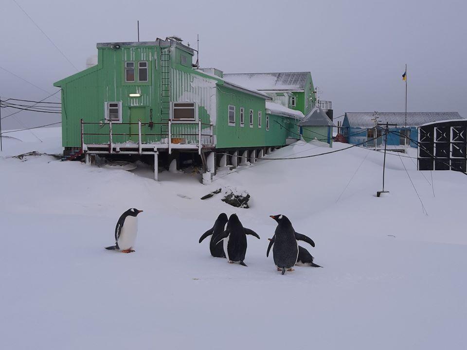 Через теплу зиму в Антарктиді на станцію