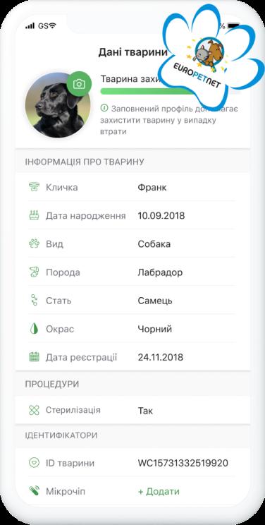 Діджиталізація для песиків: як українська компанія створила унікальний продукт