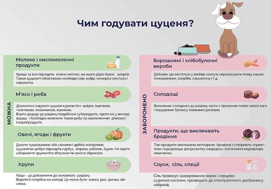 Чим годувати цуценя