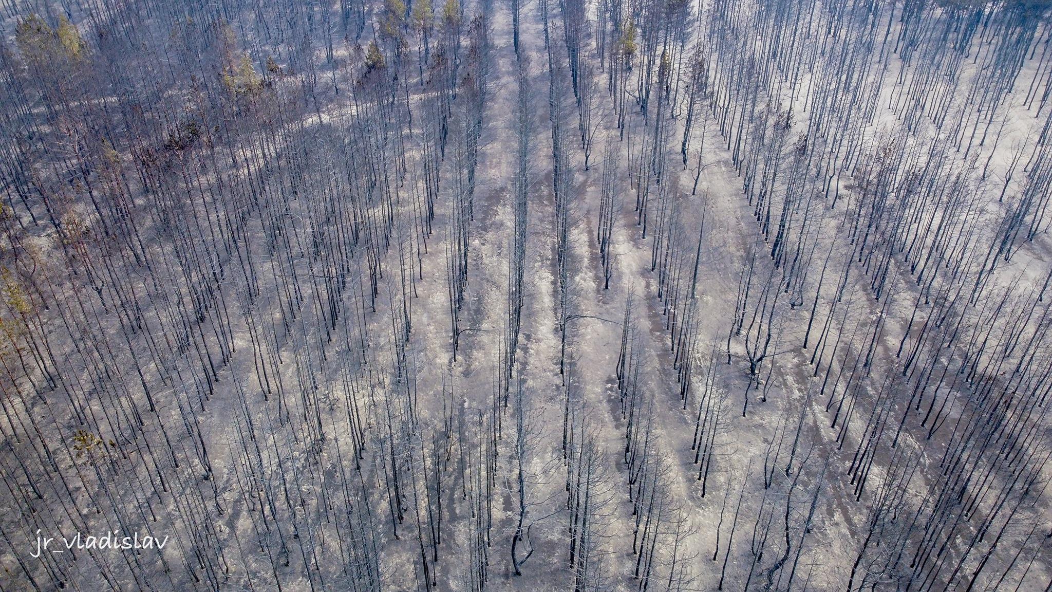 луганщина пожежі