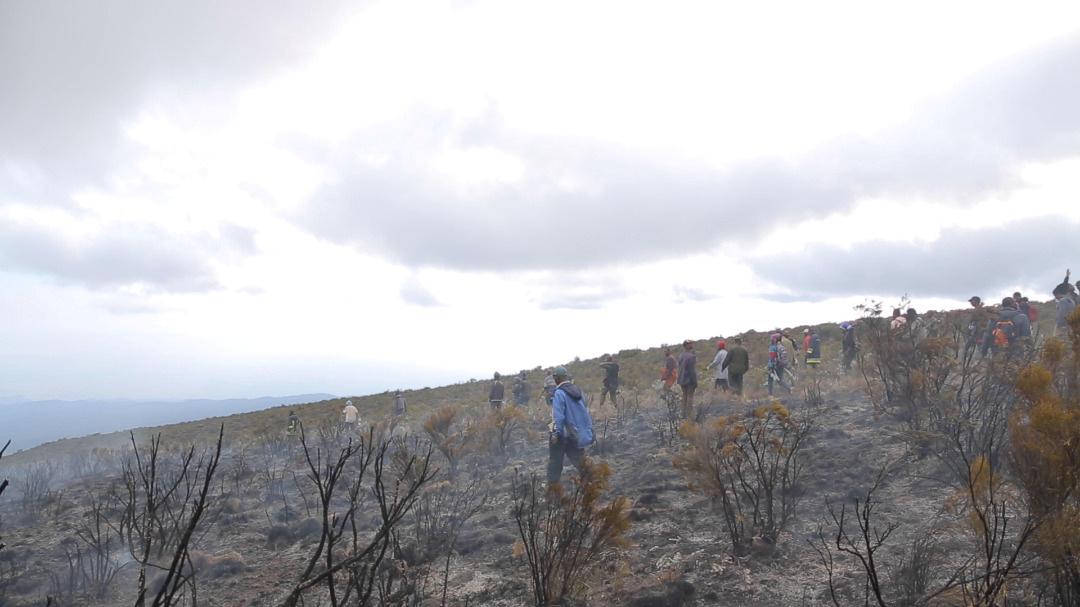 В Африці на горі Кіліманджаро третій день горять ліси