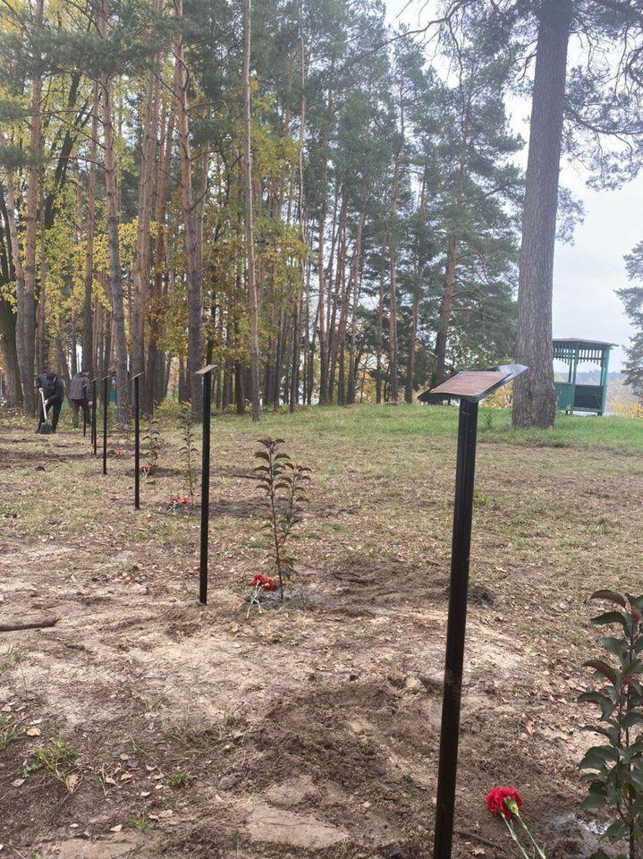 в Житомирі з'явилася Алея пам'яті загиблих на Донбасі жінок