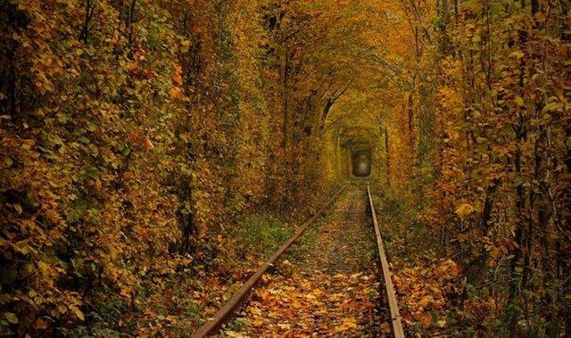 Тунель кохання восени