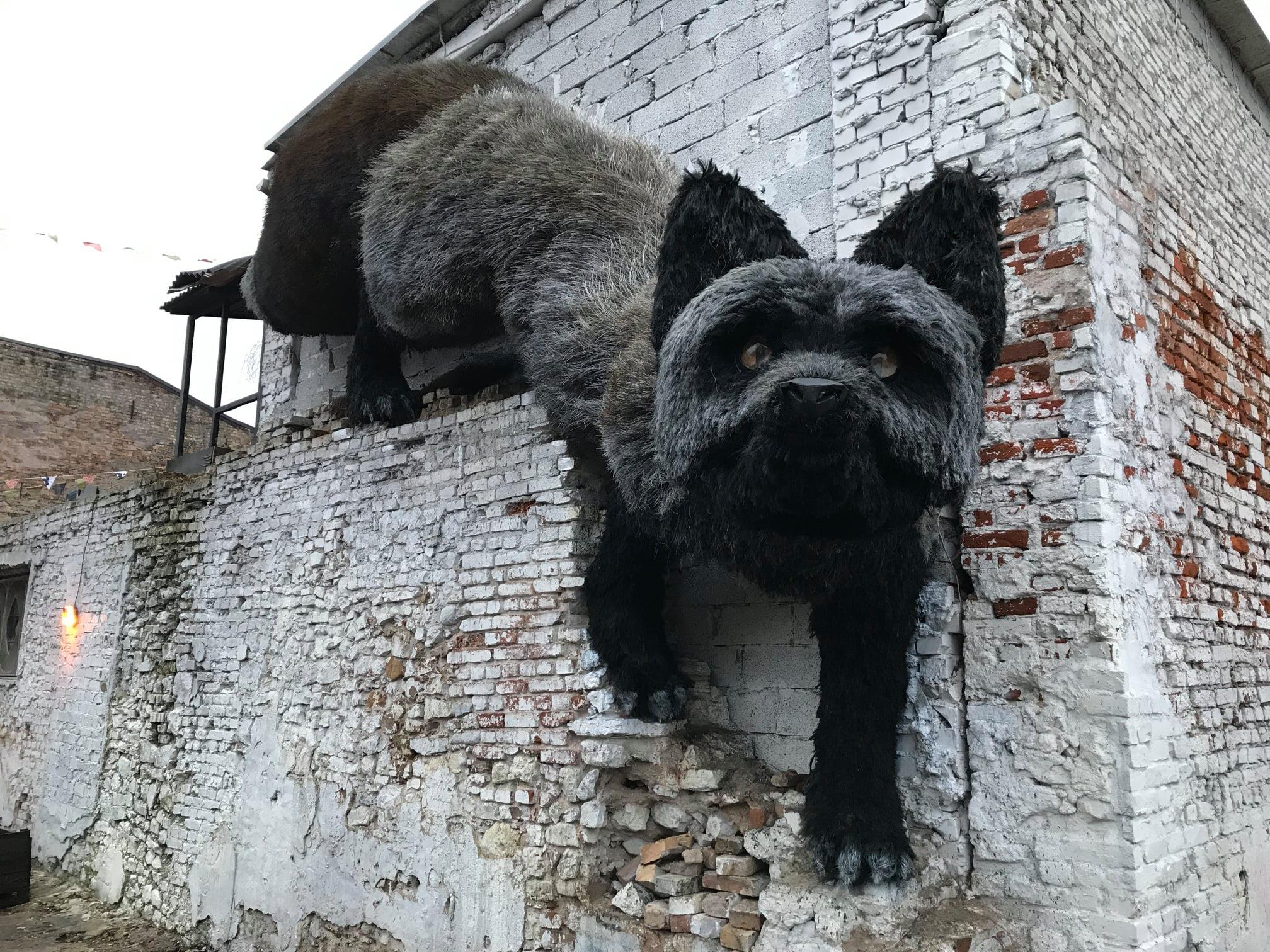 У Ризі на стіні будинку з'явилася величезна лисиця