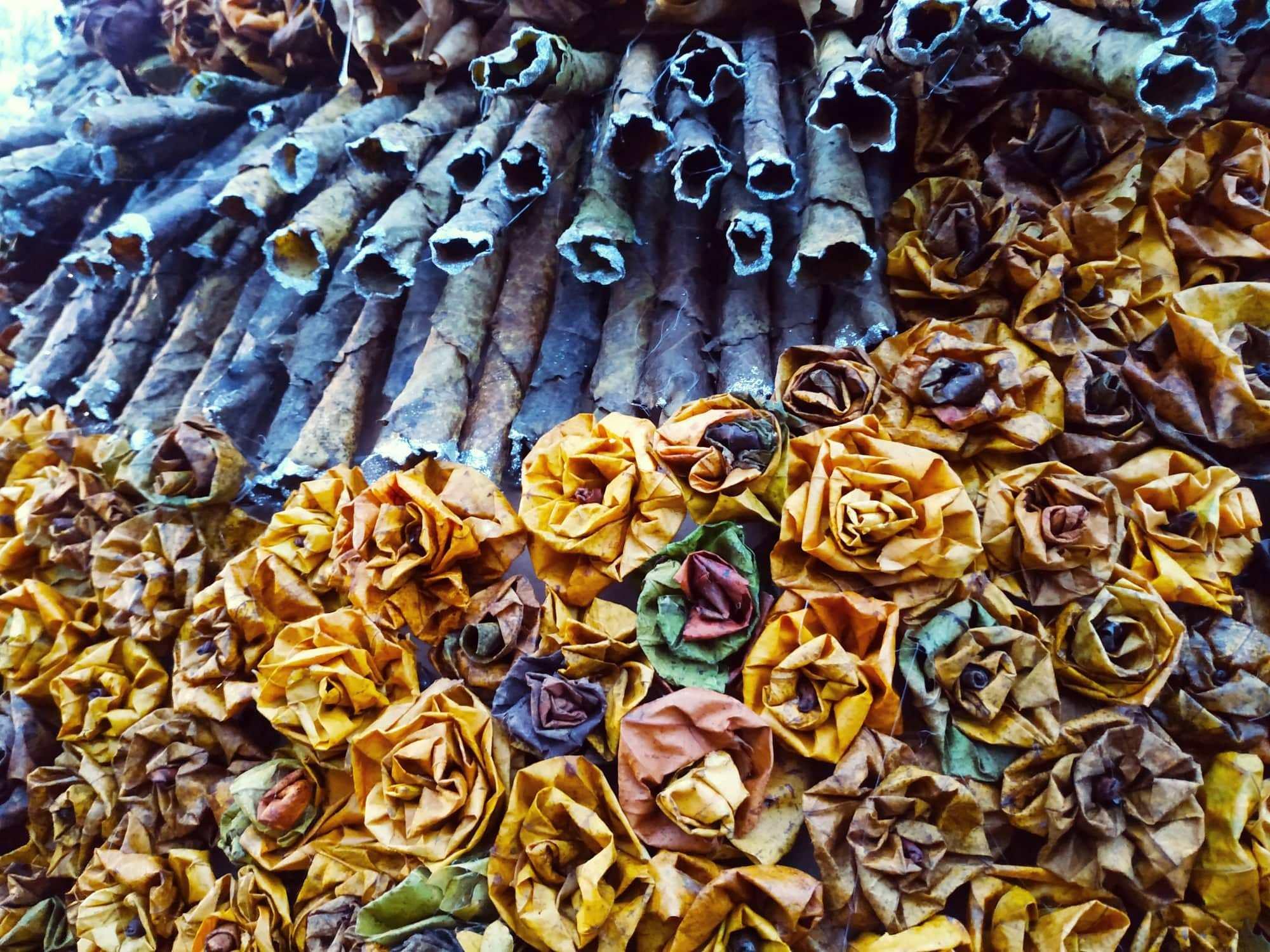 Новий рекорд: під Одесою встановили ялинку з осіннього листя