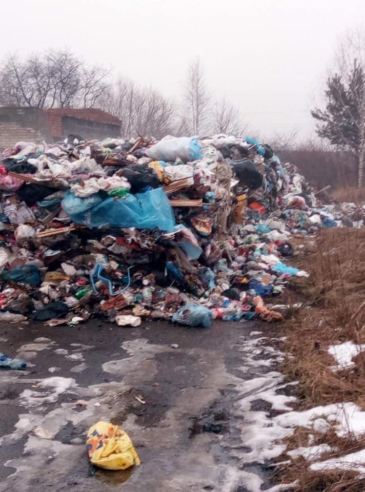 На Львівщині 60 тонн сміття викинули в озеро