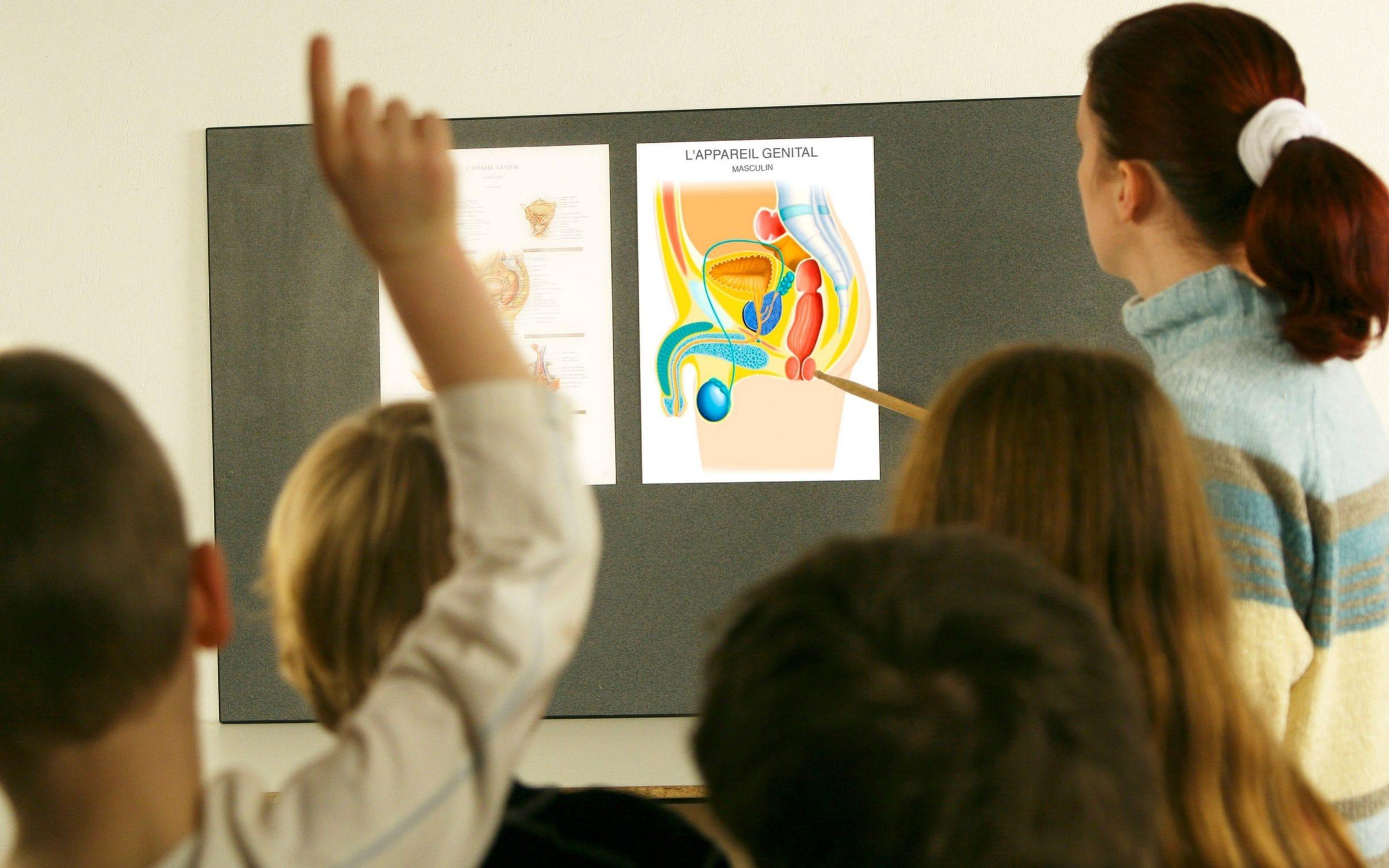 сексуальна освіта