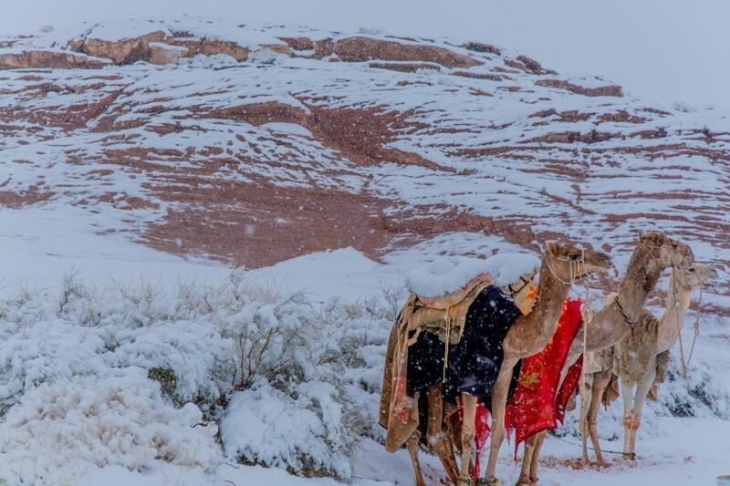 В Сахаре выпал снег
