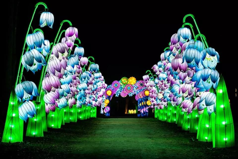 Фестиваль китайських ліхтарів на Співочому полі