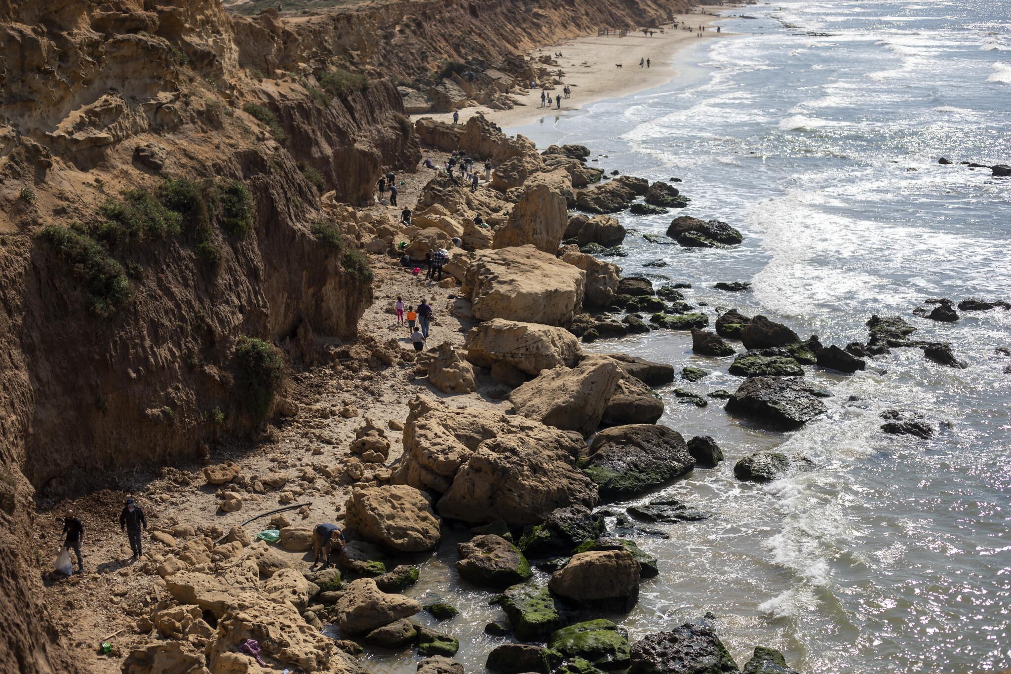 В Ізраїлі сталася екологічна катастрофа: що відомо