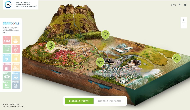 декада відновлення екосистем